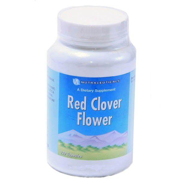 Цветки красного клевера (Red clover flowers)